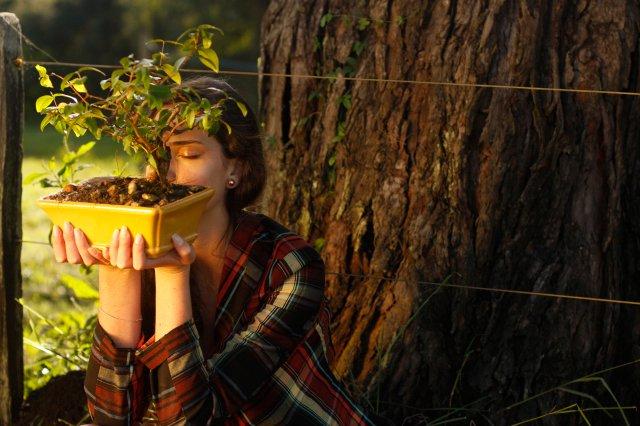 flores jardim camburi:É da nossa terra – Outono/Inverno- Flor de Maria